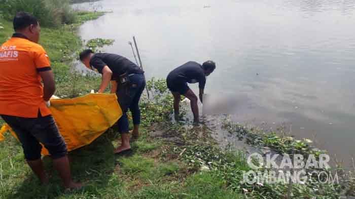 Mayat ditemukan di Sungai Brantas Kesamben, Jombang