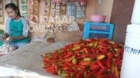 Penjual cabai rawit di pasar Blimbing Gudo Jombang. Kabarjombang.com/Daniel Eko/