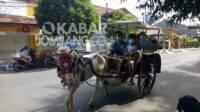 Naik dokar keliling Kota Jombang, Minggu (17/1/2021). KabarJombang.com/Diana Kusuma/
