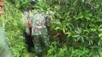 Evakuasi percobaan bunuh diri di lahan milik perhutani Dusun Gedangan, Desa Kedunglumpang, Kecamatan Mojoagung, Kabupaten Jombang, Rabu (20/1/2021). KabarJombang.com/Daniel Eko/