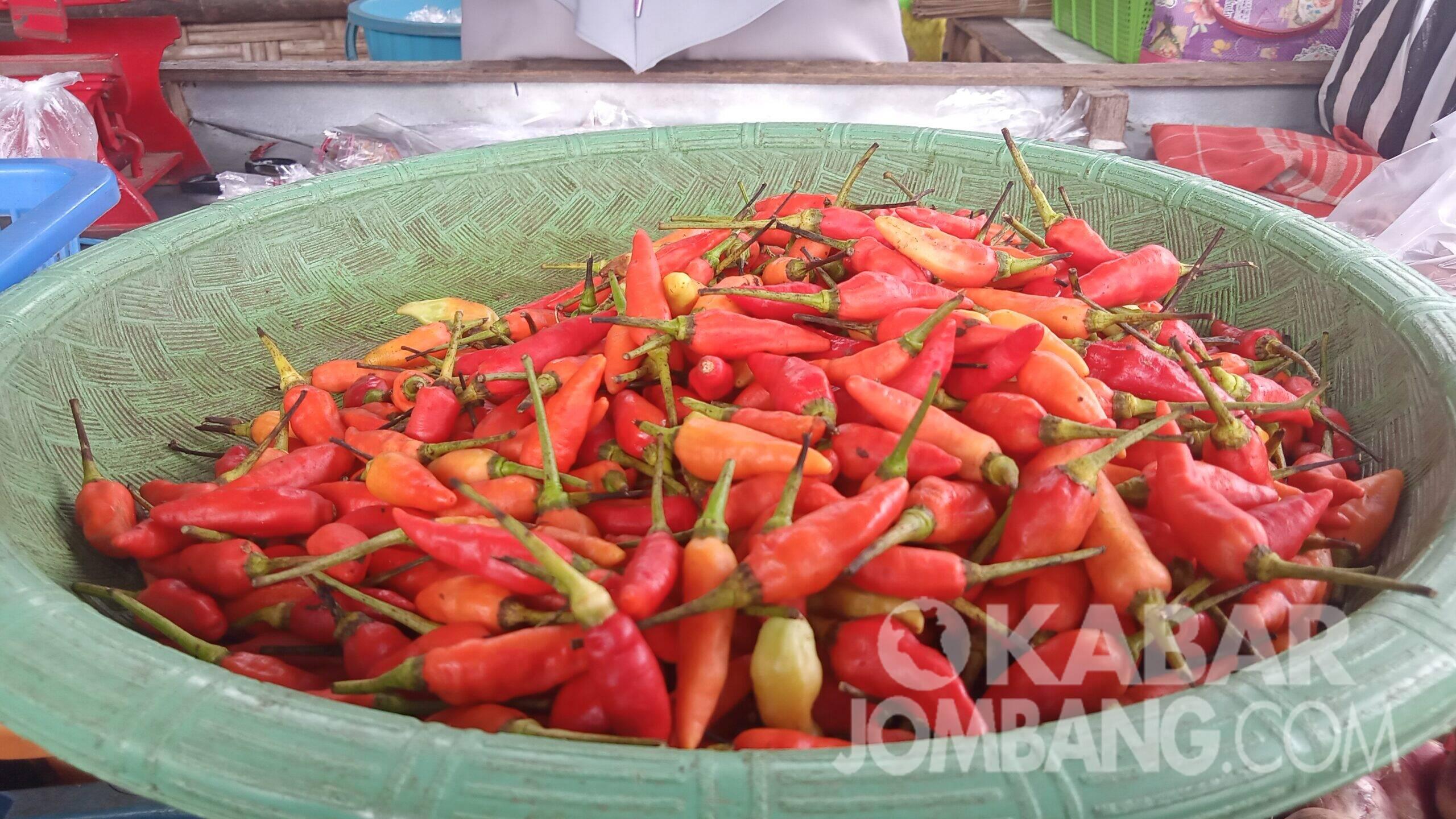 Cabai rawit. KabarJombang.com/Daniel Eko/