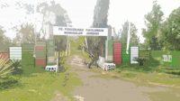 Perusahaan Umum Daerah Perkebunan Panglungan Wonosalam Kabupaten Jombang. KabarJombang.com/Istimewa/