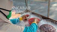 Penjual bubur sruntul yang ditemui di sekitar Jalan Denanyar, Jombang. KabarJombang.com/Anggraini Dwi/