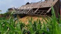 Truk gandeng bermuatan bahan keramik terperosok ke sawah di Mojoagung, Jombang, Kamis (10/6/2021). KabarJombang.com/Itigar Prana/