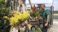 Alfian pemilik kios bunga sedang berada di kebun tanaman hiasnya. KabarJombang.com/Daniel Eko/