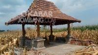 Lokasi Watulintang yang berada di tengah sawah Dusun Watulintang, Desa Badang, Kecamatan Ngoro, KabarJombang.com/M Faiz H/