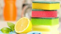 Ilustrasi spons dapur