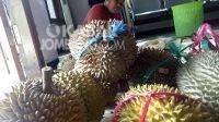 Durian siap disantap yang dijual Ipung di Desa Sambirejo, Wonosalam, Jombang. KabarJombang.com/Diana Kusuma/