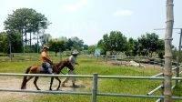 Pengunjung saat menunggang kuda di Gempolpait, Banjardowo, Jombang, Minggu (17/10/2021). KabarJombang.com/Diana Kusuma Negara/